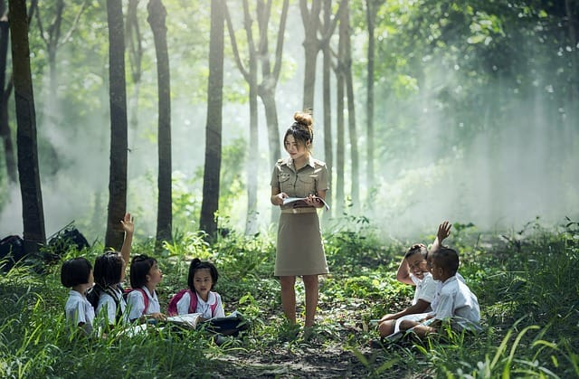 school kids study in jungle